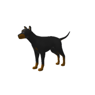 3d model - BlackDog