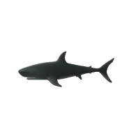 3d model - Shark