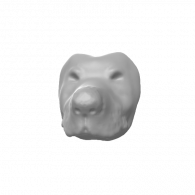 3d model - Thongmuan head