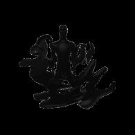 3d model - ninjashadow